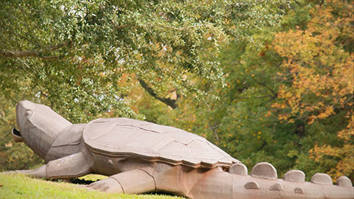 Downloadable Wallpaper for UT Tyler - Turtle by lake