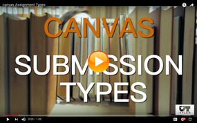 Canvas Submission Types