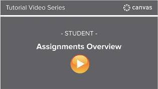 Assignments Overview